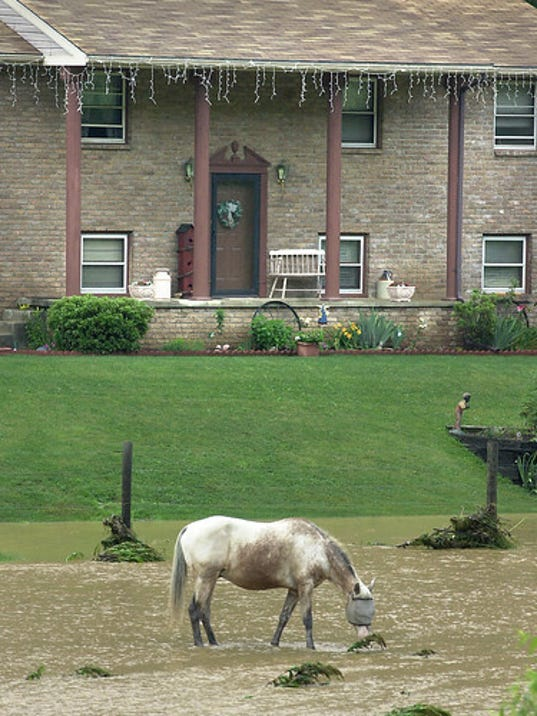 A horse walks through high water in a  pasture along Felton Road after thunderstorms caused flash floods in the area closing several roads in 2001. File -- Daily Record/Sunday News