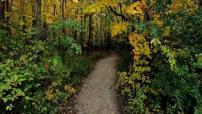 Fall colors surround a hiking trail in High Cliff State Park in Sherwood.