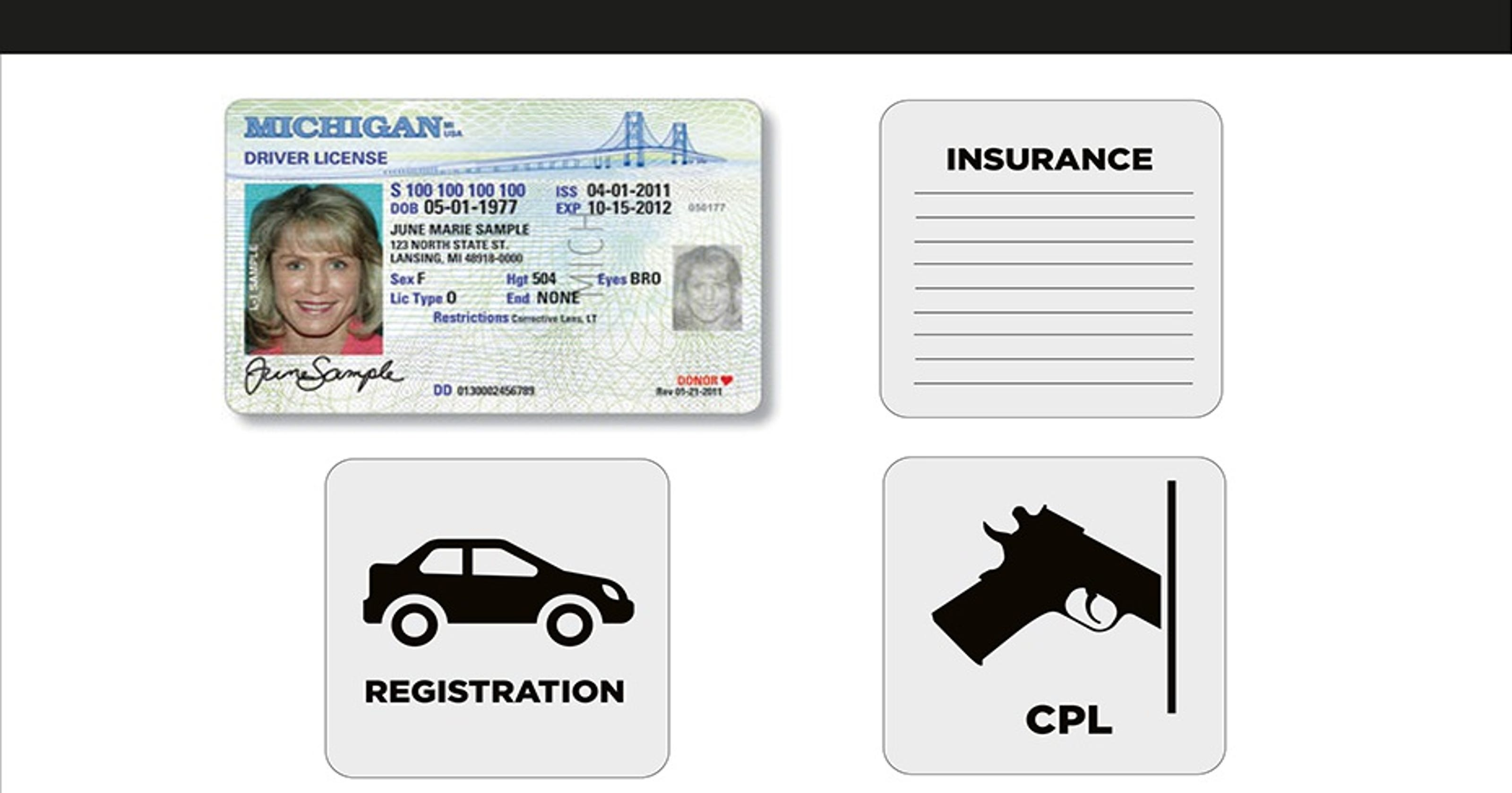 michigan drivers license points check