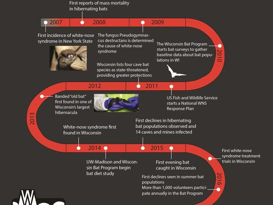 A timeline of the white-nose syndrome in Wisconsin