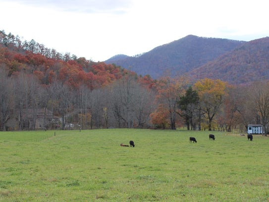 Landowners in Black Mountain have donated conservation