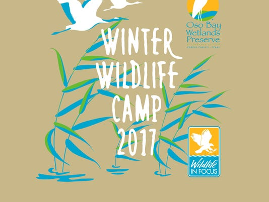 Winter-Wildlife-Camp-T.jpg