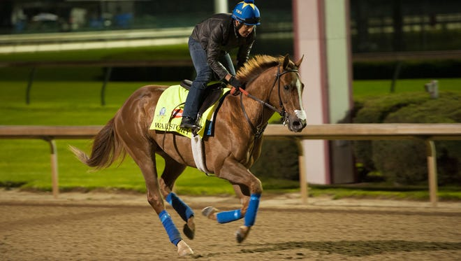 Derby contender War Story works out in the early morning the day before the 141st running of the Kentucky Derby. May 1, 2015