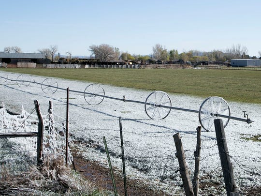 A Sprinkler wheel line is covered in frost due to a
