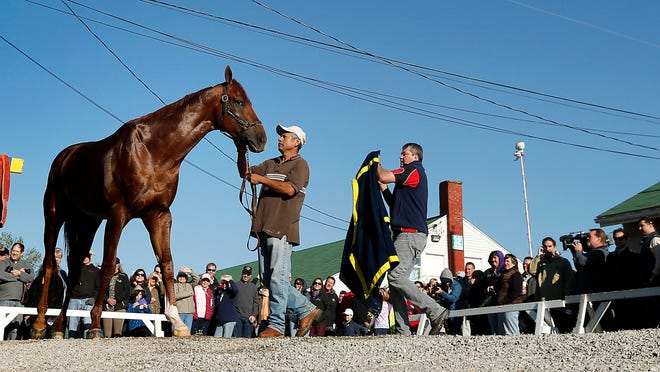 People watch while Kentucky Derby hopeful Dortmund gets a bath after a workout at Churchill Downs Tuesday in Louisville, Kentucky.
