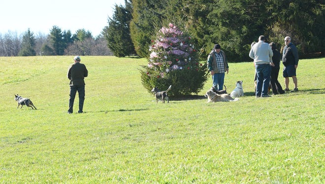 Dog owners gather together in conversation around a tree decorated by fellow dog walkers for the holiday at Coyner Springs Park in Waynesboro on Tuesday, Dec. 15, 2015. Three years ago, Dorcus Gale was the person to start the tradition of decorating the tree.