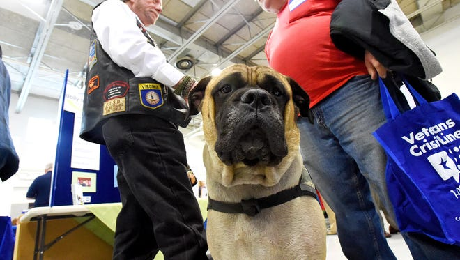 "Harley, a service dog, sits not far from owner Bruce Webb (left) of Grottoes. They attend a veteransÕ resource fair, hosted by Congressman Bob GoodlatteÕs office, at the Thomas Howie Memorial Armory in Staunton on Thursday, Feb. 18, 2016.  Webb has sleep apnea, is prone to falls, and suffers from post traumatic stress disorder. ""He's trained to wake me up at night, roll me over if I fall and help me with my PTSD,"" says Webb. ""He's my friend."""