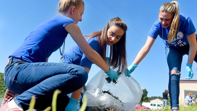 Robert E. Lee juniors Michaela Anderson, Olivia Feinstein and Allyssa Bostic work together in pulling weeds outside Augusta Regional SPCA. Students from the high school participated in a variety of community service projects as part of the school's Day of Service on Friday, Sept. 23, 2016.