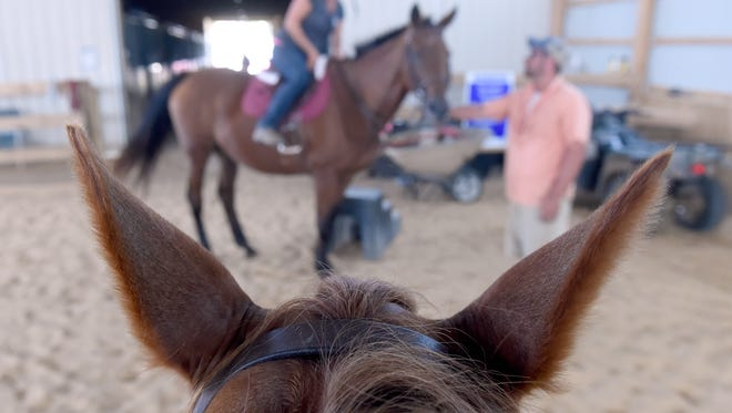 Leanne Krick, owner of Flying Change Performance Horses and Ponies, is framed up by the ears of Sora, one of her riding horses, as she prepares to lead a horseback tour of her Stewartstown farm.