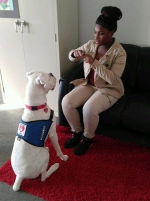 "Nijeria Briggs, a student at Creative Achievement Academy, gives the sign for ""sit"" to Ezekiel, a deaf therapy dog."