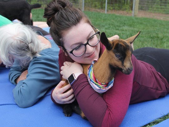 Goat Yoga will once again be held at Double BB Farms in Monroe on Saturday.