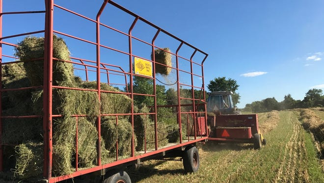 A spell of dry weather has allowed farmers to get out into  field to bale up hay and straw for the winter months.
