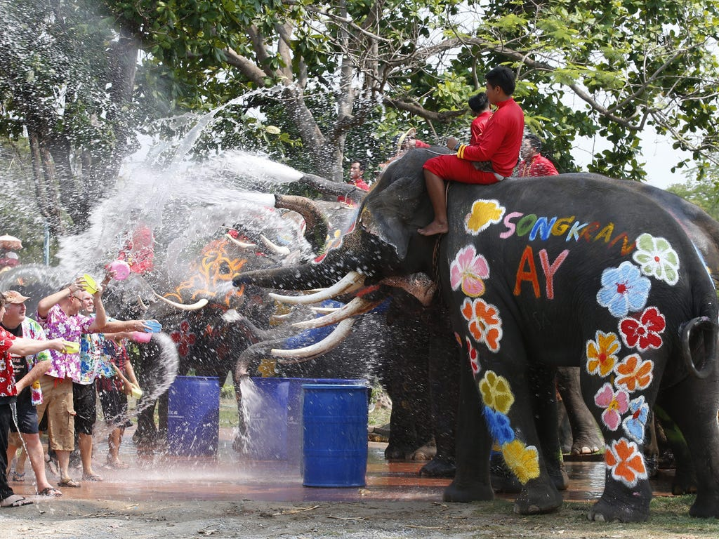 Foreigners get sprayed with water from elephants on April 10, at the ancient world heritage city of Ayutthaya, Thailand, to preview the upcoming Songkran Festival. The Thai traditional New Year, also known as the water festival.
