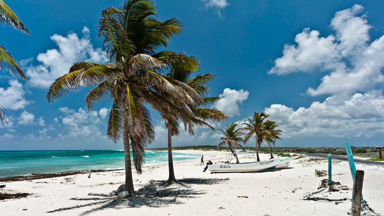 Beaches of cozumel mexico experience caribbean