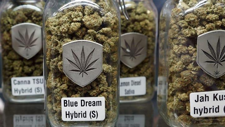 Jars of dried marijuana flowers sit inside a display