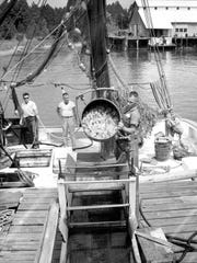 Fishermen show off their catch in Pensacola in 1970.