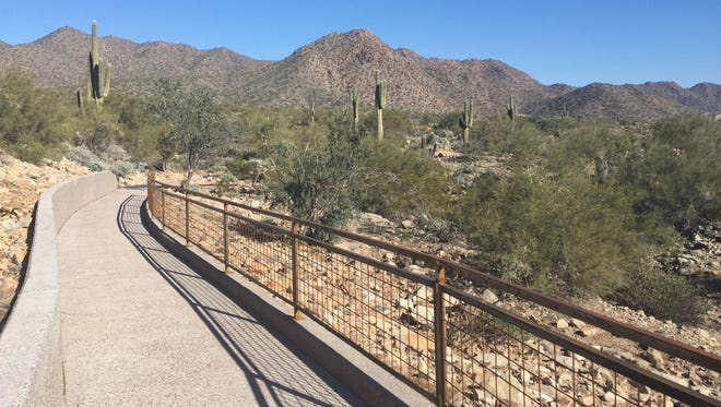 A view of the mountains along the interpretive trail at Scottsdale's Lost Dog Wash Trailhead.