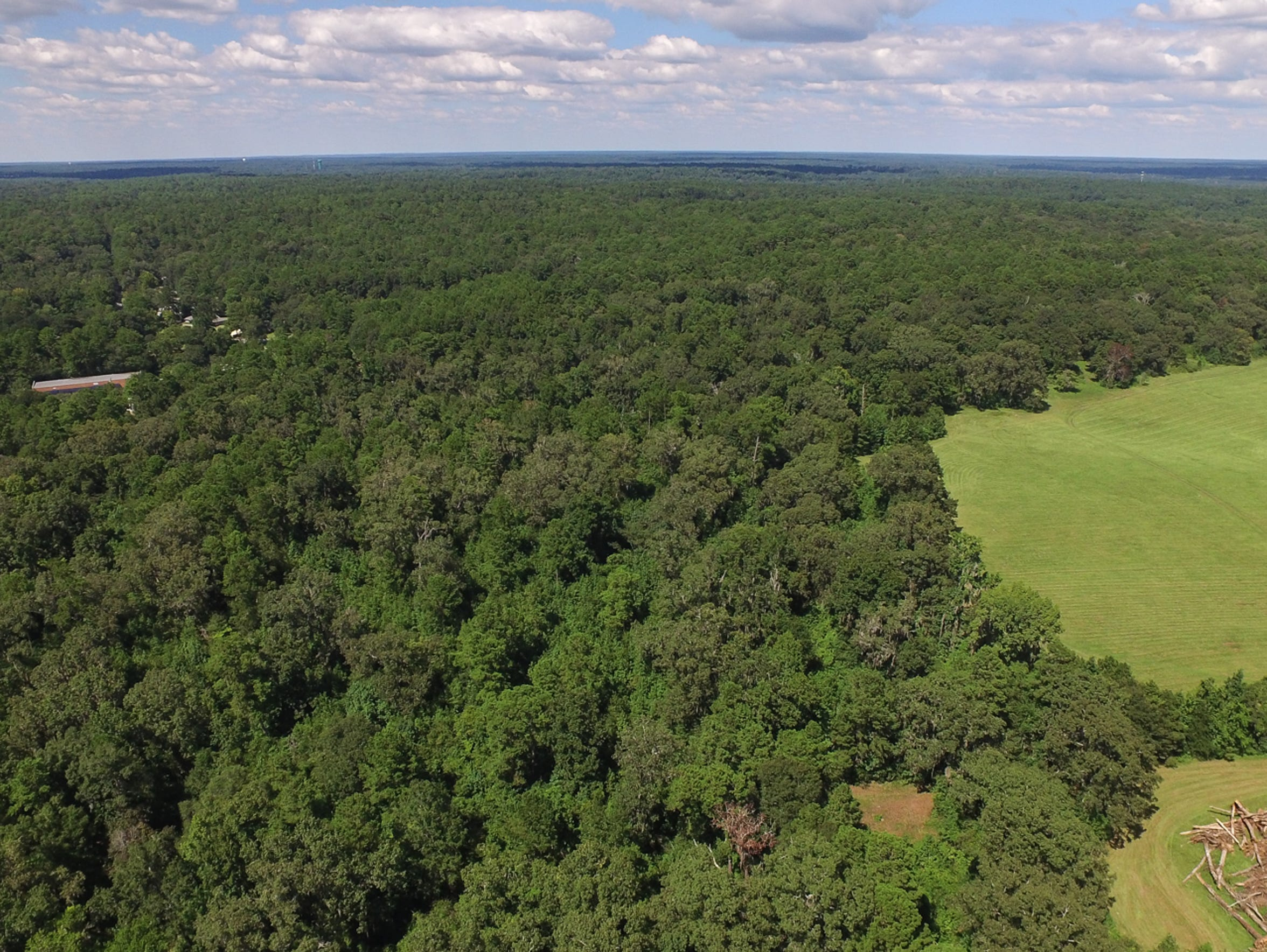 """Aerial image of one area of the """"Canopy"""" portion of"""