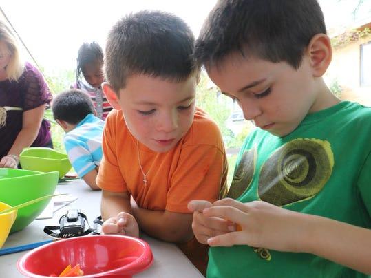 Primary-0930SchoolGardens8620