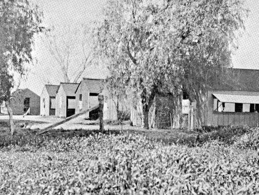 Evans School tents