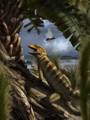 This handout picture received via the Nature website on May 28 shows a life scene in the Dolomites region, Northern Italy, about 240 million years ago, with Megachirella wachtleri walking through the vegetation.