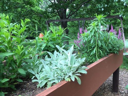 635985753008683243-Easy-Garden-06.JPG