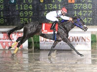 Stall applications for Delta Downs season due by Aug. 12