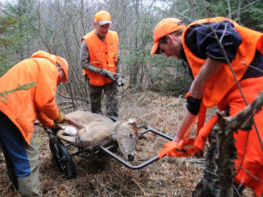 Patrick Durkin, center, and his friends Tom Heberlein, left, and Chris White use a rickshaw to help haul out a doe in Ashland County in November 2009.