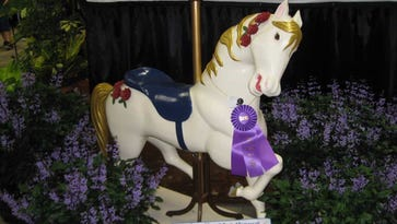 Wooden expression: Franklin man's carousel horse takes top prizes at fair