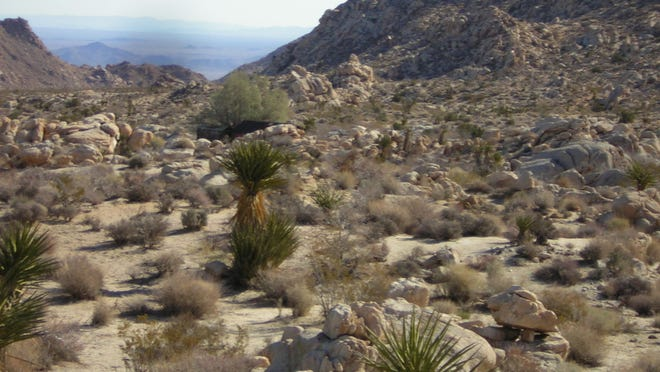 The landscape in the Old Woman Mountains Preserve in San Bernardino County. The Native American Land Conservancy recently completed a project to improve trails and other features in the preserve.