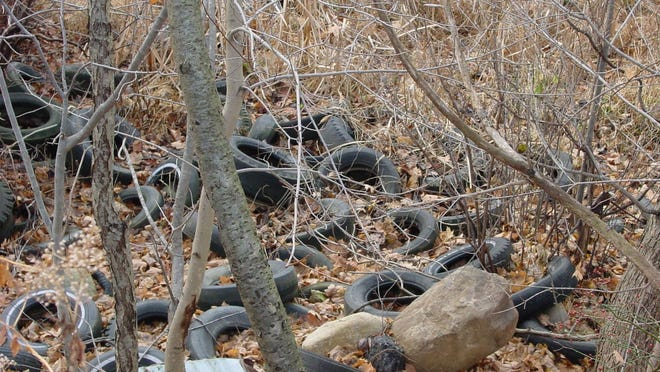 Tires found in 2002 at Steven's State Park in Mount Olive.