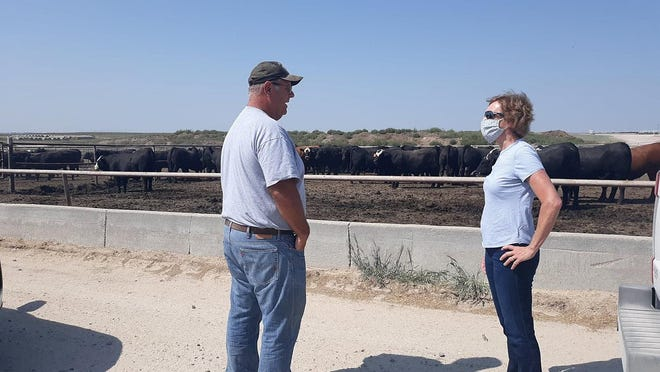 Ford County Feed Yard manager Danny Herrmann gives Kansas Democratic candidate for U.S. Senate Barbara Bollier a tour as they discuss cattle operations in Kansas over the weekend.