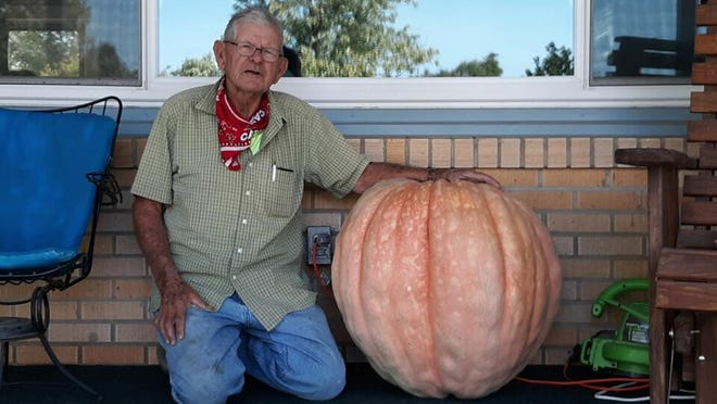 85-year old Kenneth Austin with one of the giant pumpkins he has grown in his backyard, that weighs in at around 156 pounds. PHOTO BY JUDD WEIL/DODGE CITY DAILY GLOBE
