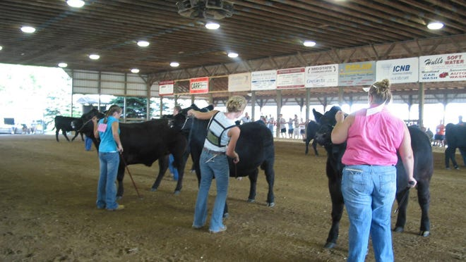 Michigan State University Extension is waiving the 4-H participation fee of $20 per person or $60 per family for the 2020-21 4-H program year that began Sept. 1.