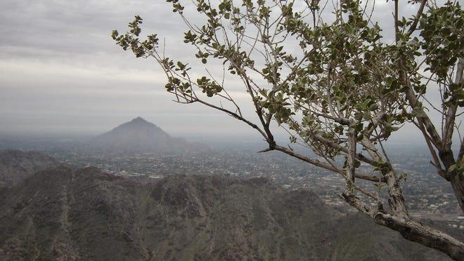Camelback Mountain as seen from Piestewa Peak.