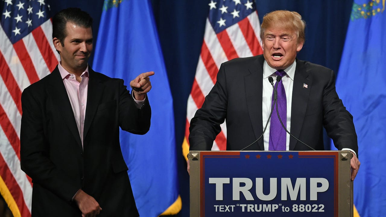 Trump statement: Son is 'high-quality person'