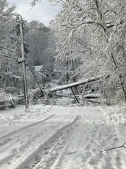 Fallen trees and downed power lines block lie across