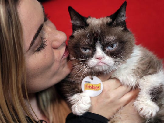 Grumpy Cat,Tabatha Bundesen