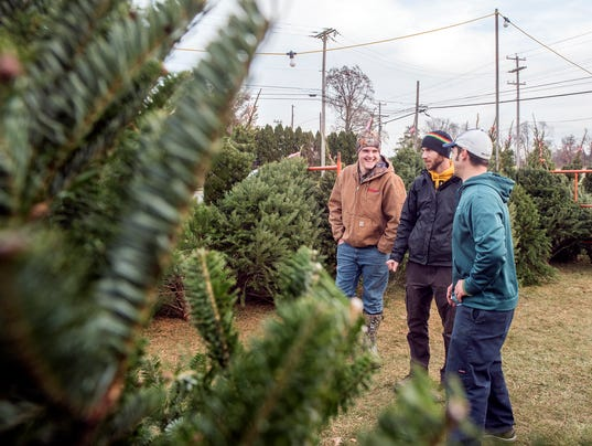 HES-TL-120217-ChristmasTrees