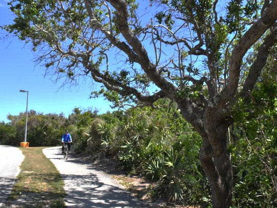A bicyclist rides along the bike path on the Brevard