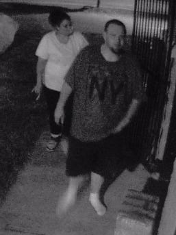 Clarksville Police believe the two individuals in the photo stole surveillance equipment from a bathroom facility in Ashland Park.