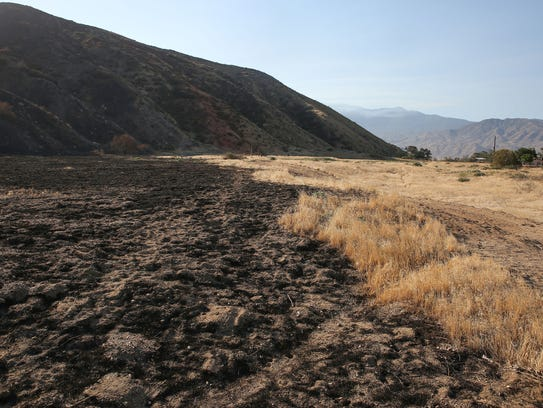 A fire line seperates the burned area of the Canyon