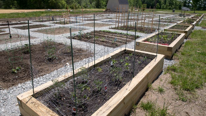 A community garden at Cyntheanne Park, Fishers, Tuesday, May 24, 2016. The site hosts more than 50 plots that are separated into areas for pesticide spraying and organic areas.