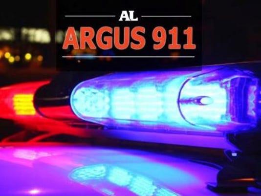 635838602785883063-police-cruiser-lights.JPG