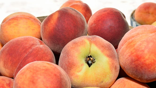 Several varieties of peaches are available at Tracey's Orchard on Hollywell Church Road, Greencastle. Warmer than usual weather in March followed by a cool April may have negatively affected this year's peach crop.