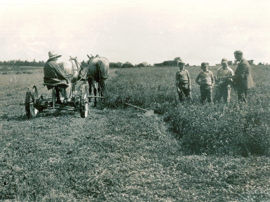 Dick Howell, George Howell, Bob Beckwith and Eric Beckwith get some advice on cutting hay from a Cornell agriculture professor in this photo from the late 1930s. Lansing Town Historian Louise Bement will share this and other photos, and stories about Lansing's farming past Saturday at the Lansing Town Hall.