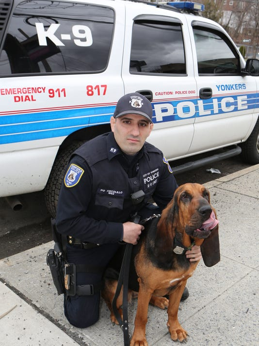 Yonkers police bloodhound
