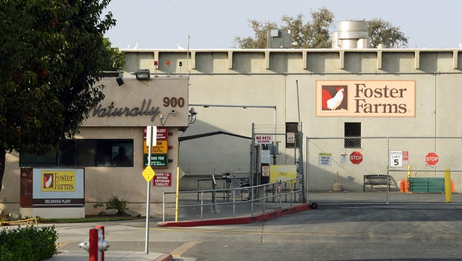 Foster Farms plants in California have been linked to a salmonella outbreak.