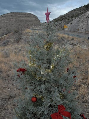 Lincoln National Forest Christmas tree permits go on sale Monday.
