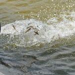 Live outdoor show: Walleye fishing in Wisconsin